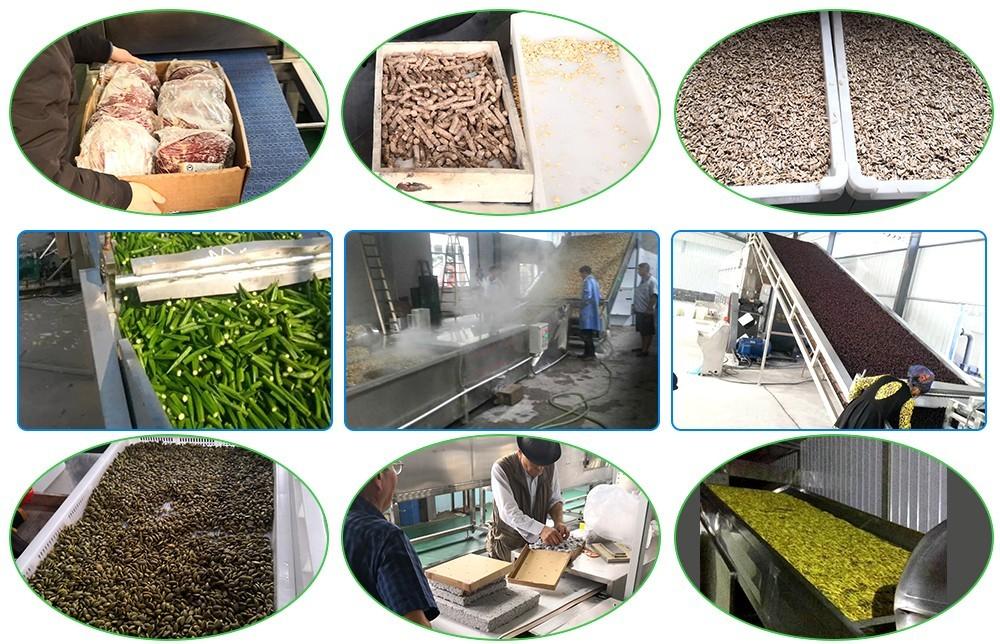 Процесс промышленной конвейерной ленточной сушки