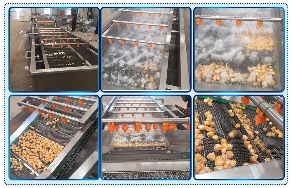 Промышленная линия по производству стиральных машин для фруктов и овощей