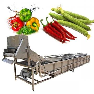 Промышленная стиральная машина для фруктов и овощей