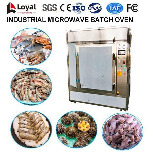 Промышленная микроволновая печь пакетная #3 image